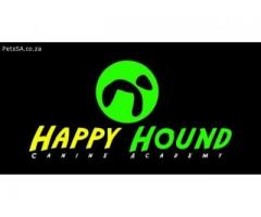 Boarding Kennel Service- Happy Hound Canine Academy