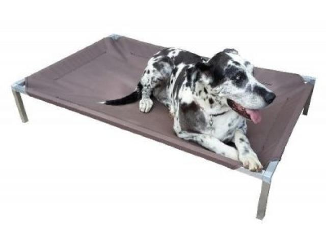 PET ASSIST Off the floor dog beds
